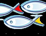 Programul Operațional Pescuit și Afaceri Maritime